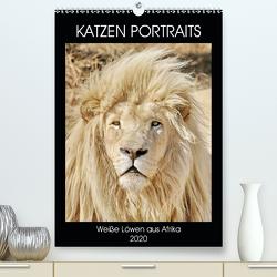 KATZEN PORTRAITS Weiße Löwen aus Afrika (Premium, hochwertiger DIN A2 Wandkalender 2020, Kunstdruck in Hochglanz) von N.,  N.