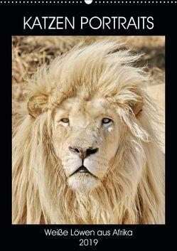 KATZEN PORTRAITS Weiße Löwen aus Afrika (Wandkalender 2019 DIN A2 hoch) von N.,  N.