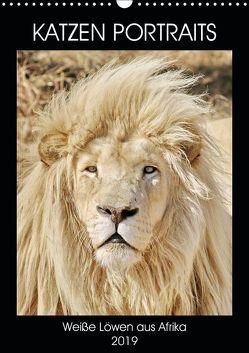 KATZEN PORTRAITS Weiße Löwen aus Afrika (Wandkalender 2019 DIN A3 hoch) von N.,  N.