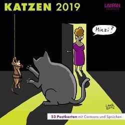 Katzen – Postkartenkalender 2019 von Diverse