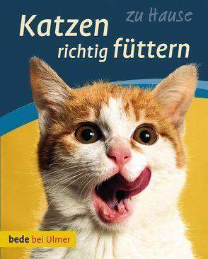 Katzen richtig füttern von Laukner,  Anna