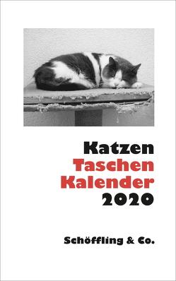 Katzen Taschenkalender 2020 von Bachstein,  Julia