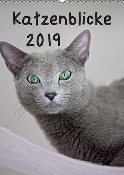 Katzenblicke 2019 (Wandkalender 2019 DIN A2 hoch) von Bollich,  Heidi