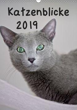 Katzenblicke 2019 (Wandkalender 2019 DIN A3 hoch) von Bollich,  Heidi