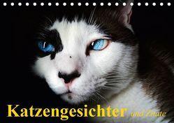 Katzengesichter und Zitate (Tischkalender 2019 DIN A5 quer) von Stanzer,  Elisabeth