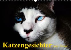 Katzengesichter und Zitate (Wandkalender 2020 DIN A3 quer) von Stanzer,  Elisabeth