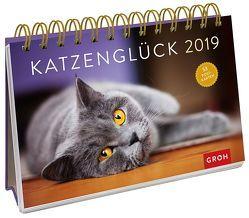 Katzenglück 2019 von Groh Redaktionsteam