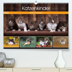 Katzenkinder – Britisch Kurzhaar (Premium, hochwertiger DIN A2 Wandkalender 2020, Kunstdruck in Hochglanz) von Sabi Fotografie by Janina Bürger,  Wabi