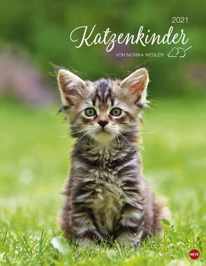 Katzenkinder Posterkalender Kalender 2021 von Heye, Wegler,  Monika