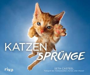 Katzensprünge von Casteel,  Seth