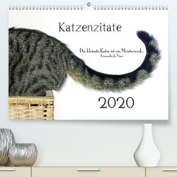 Katzenzitate 2020 (Premium, hochwertiger DIN A2 Wandkalender 2020, Kunstdruck in Hochglanz) von dogmoves