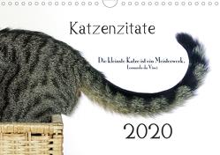 Katzenzitate 2020 (Wandkalender 2020 DIN A4 quer) von dogmoves