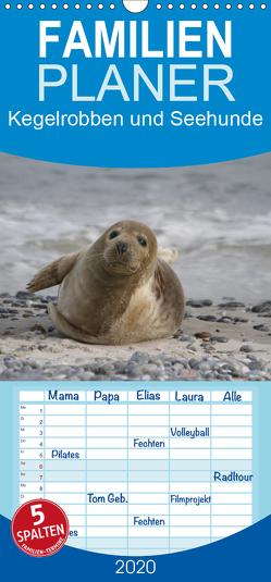 Kegelrobben und Seehunde – Familienplaner hoch (Wandkalender 2020 , 21 cm x 45 cm, hoch) von Lindert-Rottke,  Antje