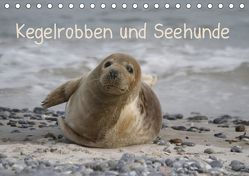 Kegelrobben und Seehunde (Tischkalender 2019 DIN A5 quer) von Lindert-Rottke,  Antje