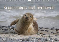 Kegelrobben und Seehunde (Wandkalender 2019 DIN A3 quer) von Lindert-Rottke,  Antje