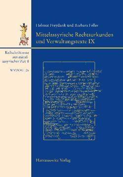 Keilschrifttexte aus mittelassyrischer Zeit / Mittelassyrische Rechtsurkunden und Verwaltungstexte IX von Feller,  Barbara, Freydank,  Helmut