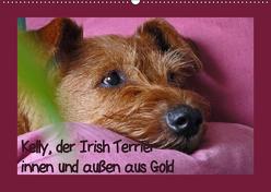 Kelly, der Irish Terrier – innen und außen aus Gold (Wandkalender 2019 DIN A2 quer) von Schimon,  Claudia