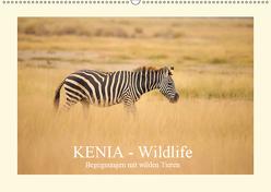 KENIA Wildlife – Begegnungen mit wilden Tieren (Wandkalender 2019 DIN A2 quer) von Demel,  Andreas