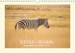 KENIA Wildlife – Begegnungen mit wilden Tieren (Wandkalender 2019 DIN A4 quer) von Demel,  Andreas