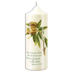 Kerze »Edelkastanie«