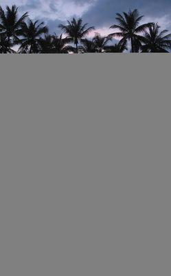 Khao Lak Entdecken – Kompakt von Kobi,  Rudolf