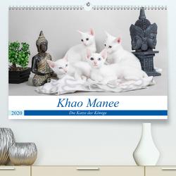 Khao Manee – Die Katze der Könige (Premium, hochwertiger DIN A2 Wandkalender 2020, Kunstdruck in Hochglanz) von Verena Scholze,  Fotodesign