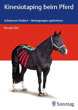 Kinesiotaping beim Pferd von Ettl,  Renate