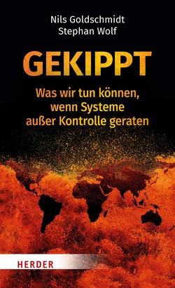 Kippmomente von Goldschmidt,  Prof. Dr. Nils, Wolf,  Stephan