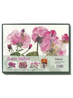 KK-Box Rosen blühen von Hecht,  Dieter