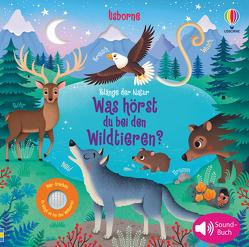 Klänge der Natur: Was hörst du bei den Wildtieren? von Iossa,  Federica, Taplin,  Sam