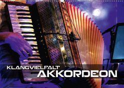 Klangvielfalt Akkordeon (Wandkalender 2019 DIN A2 quer) von Bleicher,  Renate