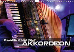 Klangvielfalt Akkordeon (Wandkalender 2019 DIN A4 quer) von Bleicher,  Renate