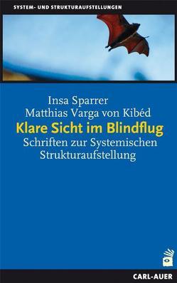 Klare Sicht im Blindflug von Sparrer,  Insa, Varga von Kibéd,  Matthias