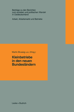 Kleinbetriebe in den neuen Bundesländern von Brussig,  Martin u.a.