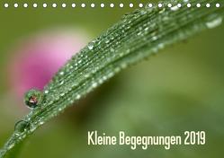 Kleine Begegnungen (Tischkalender 2019 DIN A5 quer) von Farenholtz,  Gisela