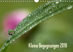 Kleine Begegnungen (Wandkalender 2019 DIN A4 quer) von Farenholtz,  Gisela