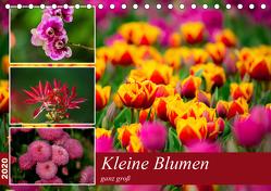 Kleine Blumen ganz groß (Tischkalender 2020 DIN A5 quer) von Reznicek,  M.