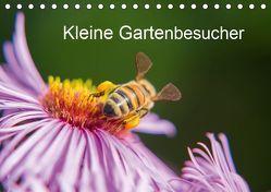 Kleine Gartenbesucher (Tischkalender 2019 DIN A5 quer) von Homburger,  Rainer
