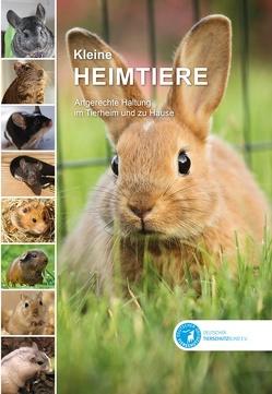 Kleine Heimtiere von Deininger,  Elke, Mackensen,  Henriette