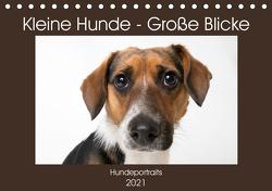 Kleine Hunde – Große Blicke (Tischkalender 2021 DIN A5 quer) von Akrema-Photography