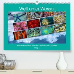 Kleine Kunstwerke in den Weiten der Ozeane (Premium, hochwertiger DIN A2 Wandkalender 2021, Kunstdruck in Hochglanz) von Gödecke,  Dieter