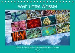 Kleine Kunstwerke in den Weiten der Ozeane (Tischkalender 2019 DIN A5 quer) von Gödecke,  Dieter