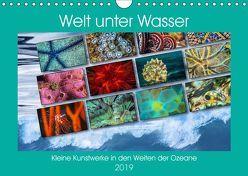 Kleine Kunstwerke in den Weiten der Ozeane (Wandkalender 2019 DIN A4 quer) von Gödecke,  Dieter