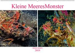 Kleine MeeresMonster (Wandkalender 2019 DIN A2 quer) von Gödecke,  Dieter