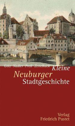 Kleine Neuburger Stadtgeschichte von Goetz,  Thomas, Nadler,  Markus, Prell,  Marcus, Zeitelhack,  Barbara
