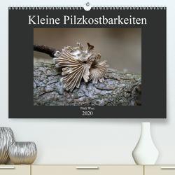 Kleine Pilzkostbarkeiten (Premium, hochwertiger DIN A2 Wandkalender 2020, Kunstdruck in Hochglanz) von Won,  Pörli