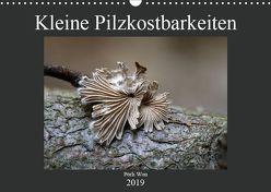 Kleine Pilzkostbarkeiten (Wandkalender 2019 DIN A3 quer) von Won,  Pörli