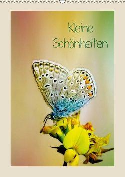 Kleine Schönheiten (Wandkalender 2018 DIN A2 hoch) von Hultsch,  Heike