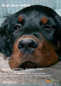 Kleine Schritte, grosse Ziele von Baur-Müller,  Birgit