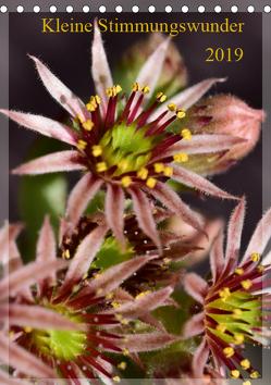 Kleine Stimmungswunder (Tischkalender 2019 DIN A5 hoch) von Gaudig,  Marlise